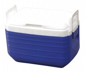 Φορητό ψυγείο Thermos 43lt
